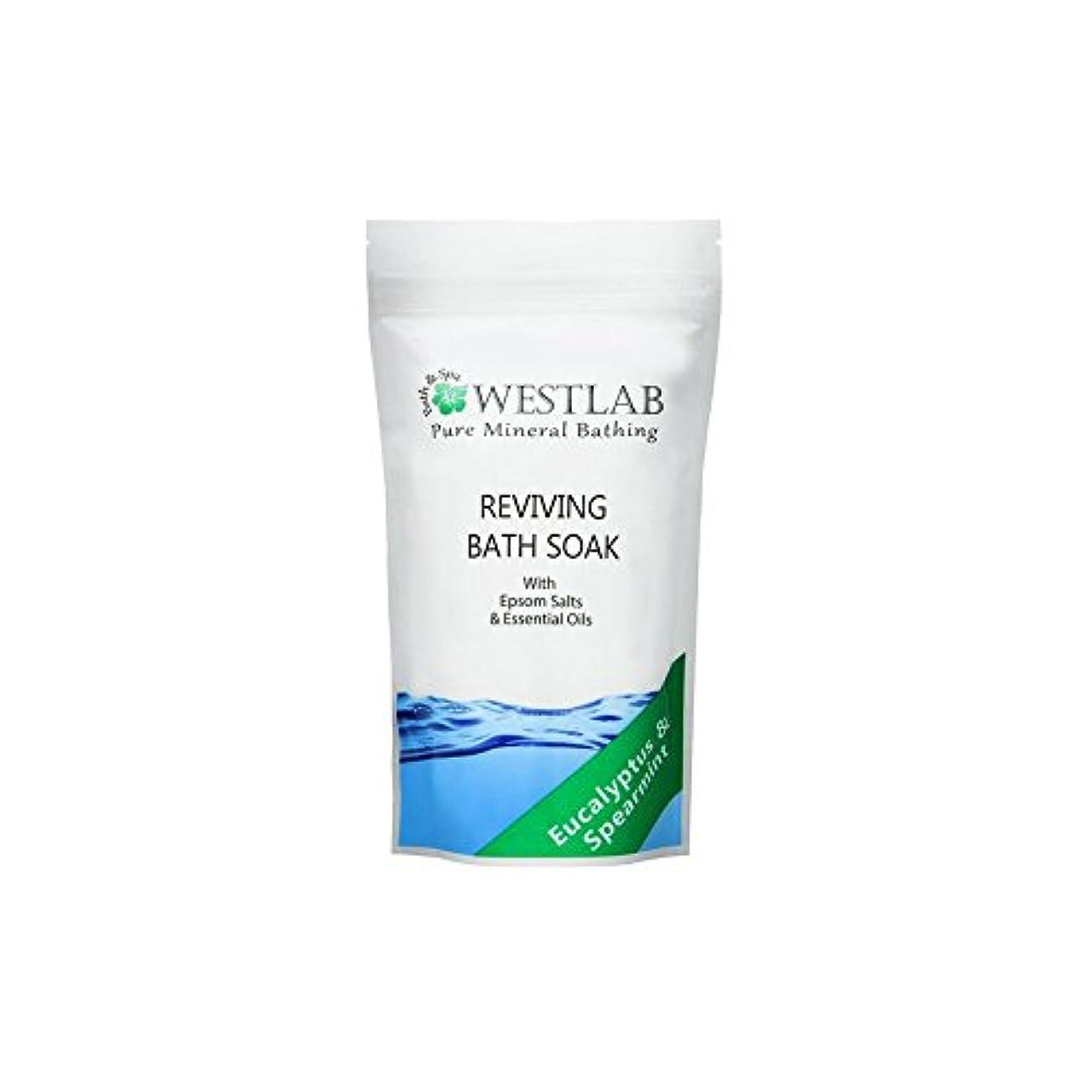 柔らかいエコー病んでいる(500グラム)をソークエプソム塩浴を復活させます x4 - Westlab Revive Epsom Salt Bath Soak (500g) (Pack of 4) [並行輸入品]