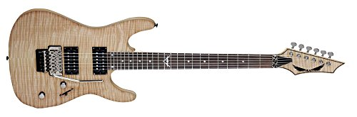 Dean Custom 350 Floyd Electric Guitar with Floyd Rose Bridge - Trans Black