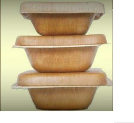 Caja de alimentos de vaina de palma Areca - 500 ml, con tapa, 20 piezas, desechable, alternativa a los plásticos desechables, biodegradable, 19 x 14 cm, ideal para llevar, restaurantes