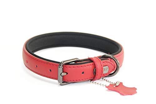 PROFTI Collar de piel para perro con espuma (S, rojo)