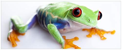 Wallario Acrylglasbild Lustiger Frosch in grün und orange - 50 x 125 cm in Premium-Qualität: Brillante Farben, freischwebende Optik