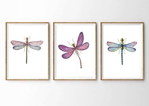 Kunstdruck 3-teilig Din A4 ungerahmt Aquarell Pflanze Natur Zweige /Äste Gr/ün Landhaus Romantik Druck Poster Bild