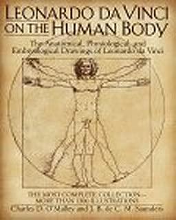 anatomical body drawing
