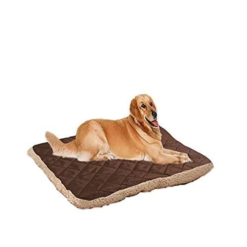 Freenfitmall Cama para perro, colchón ortopédico para perro y alfombrilla de almohada para cajón de perro (M,Lightcoffee)