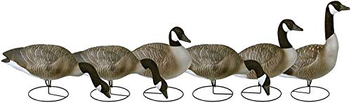 Flambeau Outdoors Waterfowl Decoys & Accessories 8990FBU Storm Front 2 Fullbody Canada Goose Field Decoy - 6 Pack