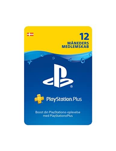 Scheda SCEE PSN Plus 12m Abbonamento DK (PS3/PS4/PS5/Vita)