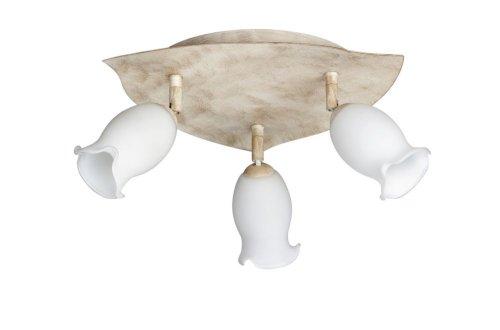 Massive Spot Lampe (intérieur courant alternatif G9 Blanc halogène)