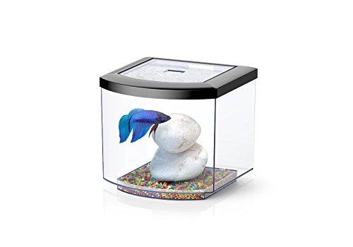 Aquarium BettaCub Aquatlantis negro