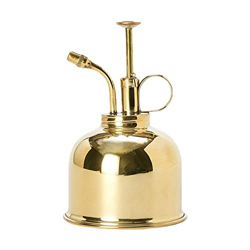 TYLC Botella de riego Vintage Latas de Agua Jardinería Rociar Botella Riego Pot Jardín Herramienta (Color : Gold)