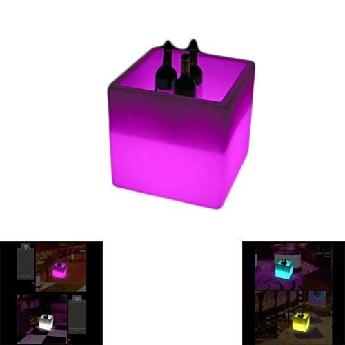 ZXL LED Ice Bucket Bar Wine Cabinet Double Decker Remote Control 40 x 40 x 40 cm gebouwd uit 900-4000 mAh accu voor bier, ijswijn opslag incl.