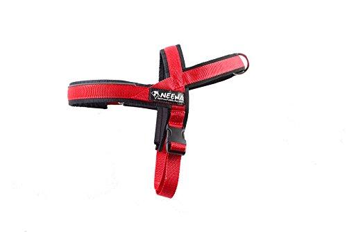 Neewa 8033087538311–Sport Gurt Rot Small