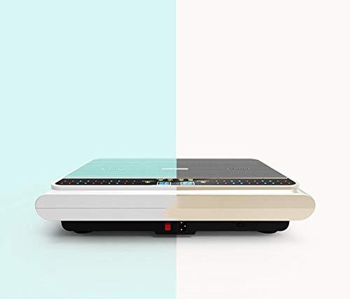Topashe Ablehnung von Fett,Fetthebender Shaker, stehender Shaker-Golden,Vibrationsplatte Leistungsstark