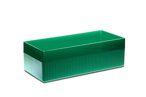Authentics 1300336 Kali Grande boîte de Rangement Transparent/Bleu 28,5 x 9 x 12 cm