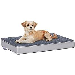 Focuspet Dog Beds
