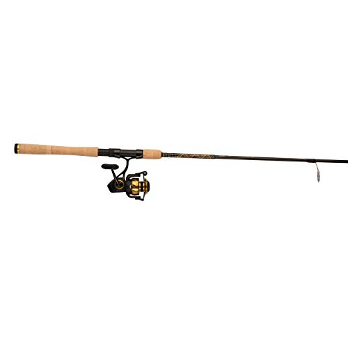 Best Quality Salmon Fishing Rod and Reel Combo