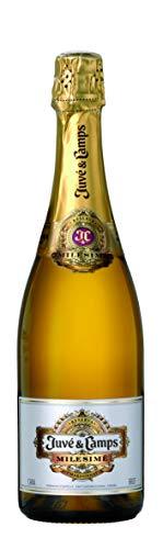 Juvé & Camps | Cava Reserva Brut Milesime | 1 Botella de 75 cl | Chardonnay