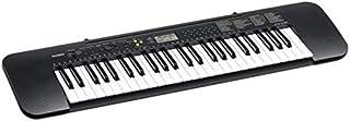 Casio CTK-240 Standard Keyboard With Casio AD-E95100 Adapter