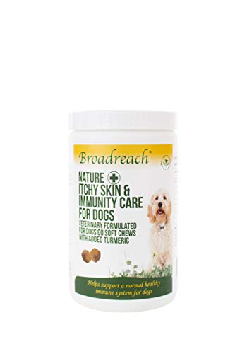 Broadreach Nature + Itchy Skin & Immunity Care Chews with Turmeric for Dogs 1 x 60