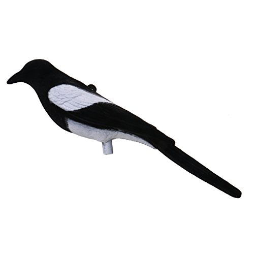 Jagd Lockvogel, Vogelschreck - Elster