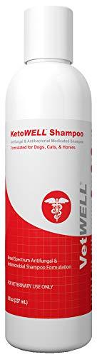KetoWELL Ketoconazole & Chlorhexidine Shampoo