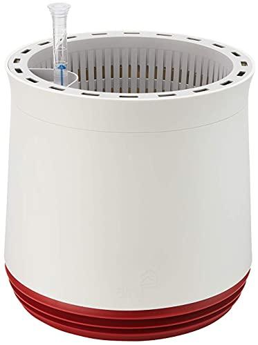 AIRY System M (Ø 28 cm) - Sistema brevettato con la forza delle piante come purificatore d'aria naturale e umidificatore per interni, effetto scientificamente provato.
