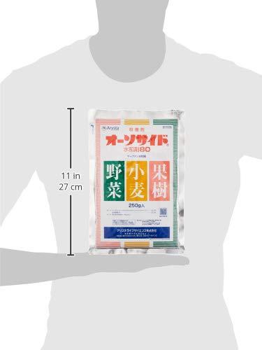 アリスタライフサイエンス オーソサイド水和剤80 250g