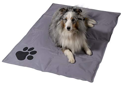 dobar 60422 Große Kühlmatte für Hunde, selbstkühlende Haustiermatte mit Pfoten Muster, 99,5 x 70 cm, Grau
