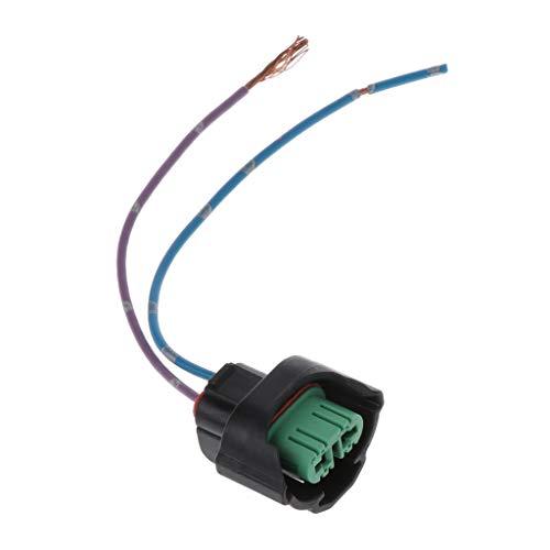 FXCO Import H11 Adaptateur secteur pour voiture