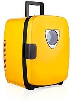 LSWY Mini réfrigérateur de Voiture réfrigérateur électrique et réchauffeur-12V   220V 20Lcapacity