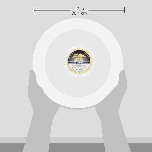 [冷蔵]アンブロージパルミジャーノレッジァーノフレーク50g