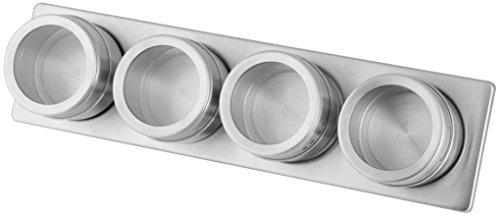 Fackelmann Magnetleiste mit 4 Dosen, Aufbewahrung für Gewürzdosen, Gewürzregal zur Anbringung an der Wand (Farbe: Silber/Transparent), Menge: 1 Leiste, 4 Dosen