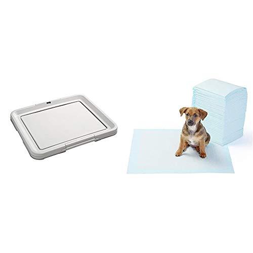 HUNTER Puppy Toilet, Cachorro Inodoro con klickra hmen para Puppy Pads EINLAGEN, 48x 40cm + AmazonBasics - Toallitas de Entrenamiento para Mascotas (tamaño Regular, 100 Unidades)