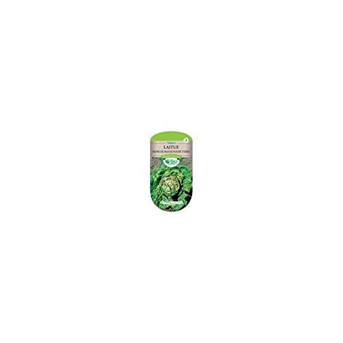 Les doigts verts Semence Laitue Reine de Mai