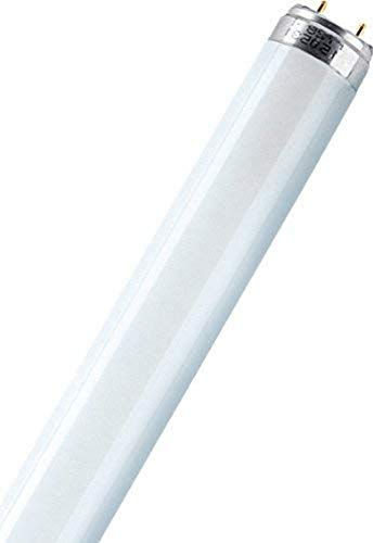 Leuchtstofflampe L 18 Watt 865 - Osram 18W Tageslicht