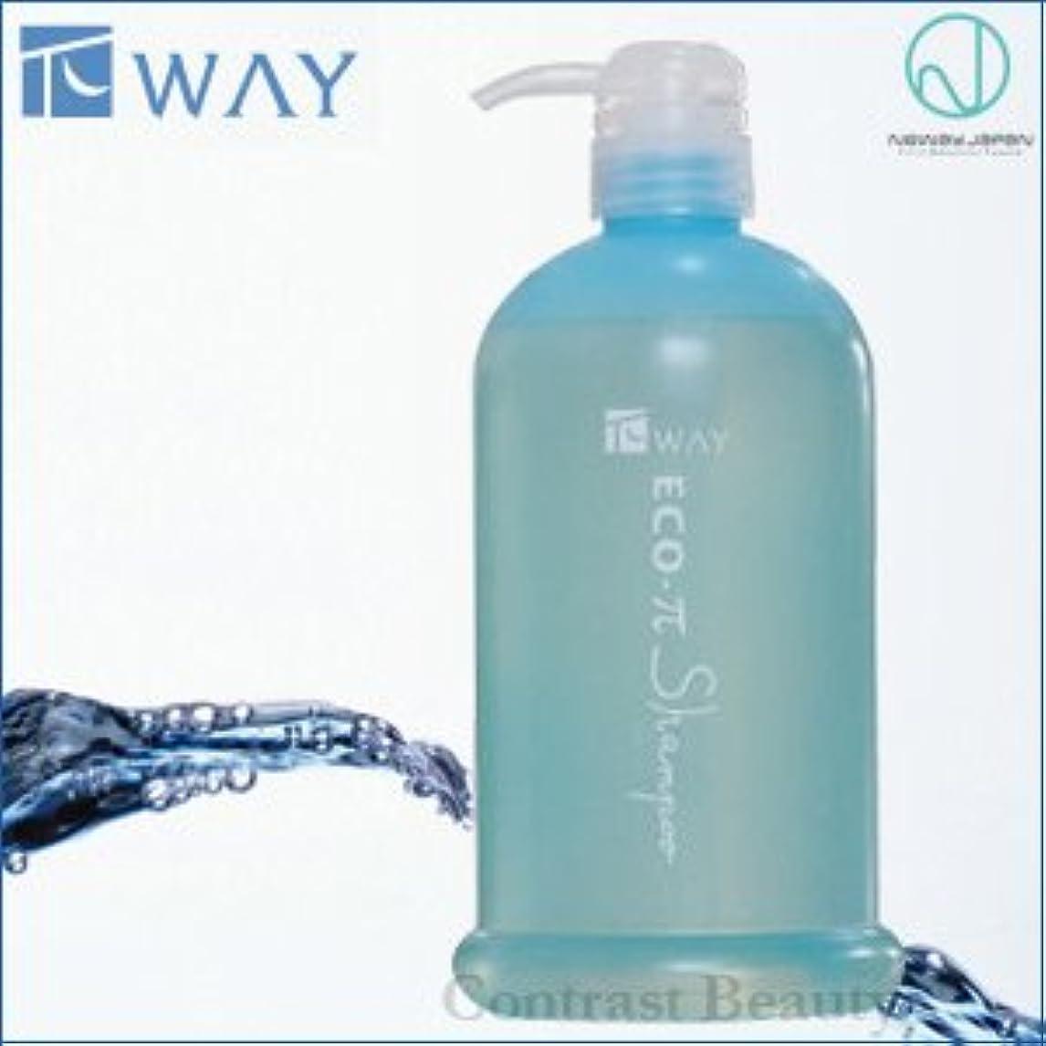 維持洗剤保護【X2個セット】 ニューウェイジャパン パイウェイ エコπシャンプー 800ml ポンプ付容器入り NewayJapan
