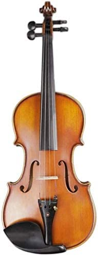 LIRONGXILY Acoustic Violin Fiddle Free shipping anywhere in the nation Solid Handmade Wood Han Ranking TOP3