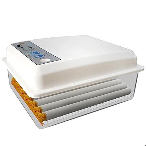 QAZW Incubadora De Huevos Control Automático De Temperatura Mini Incubadora Automática Digital De 24 Huevos con Dispositivo Automático De Volteo De Huevos para Codornices,White-48x16cm
