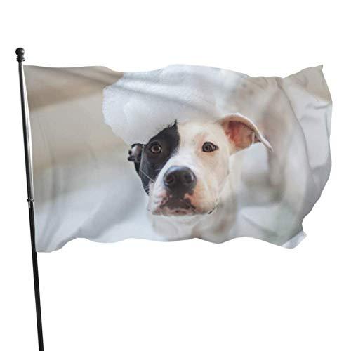 Zemivs Hund nehmen eine Dusche mit Seife und Wasserfahne Tischdekoration Holiday Yard Flags 3x5 Fuß vibrierende Farben Qualität Polyester und Messing Ösen