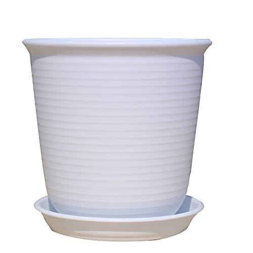 Inconnu Pot De Fleurs, Pot De Fleurs en Plastique, Pot De Fleurs Charnu en Pot, Plateau De Livraison Pot de Jardinage (Color : White, Size : No. 2)