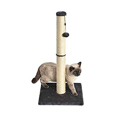 AmazonBasics Medium Cat Scratching Post - 16 x 16 x 32 Inches, Gray