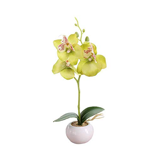 Demarkt Simulatie potplanten klein rond zwembad drie bloemen Phalaenopsis Bonsai met keramische wastafel 28cm groen