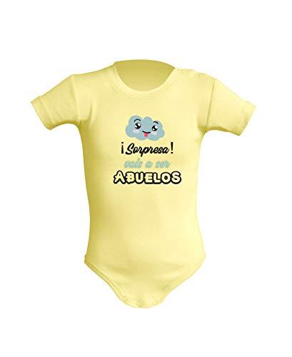 Desconocido Body Unisex para bebé.Regalo Original.Varios Modelos (3 Meses, Amarillo)