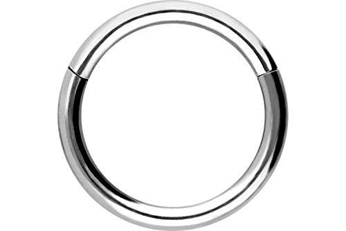Piercingline - Anillo segmentado, piercing de nariz para Septum, tipo clicker / Acero quirúrgico / Piercing hélice, tragus, color y tamaño a elegir