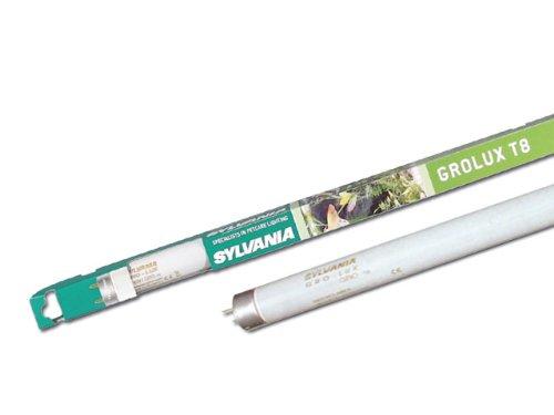 Sylvania Gro-Lux – lampe fluorescente Gro-Lux fho54 W/gro