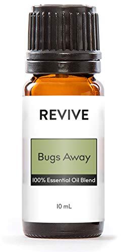 Top 10 Best massage bug Reviews
