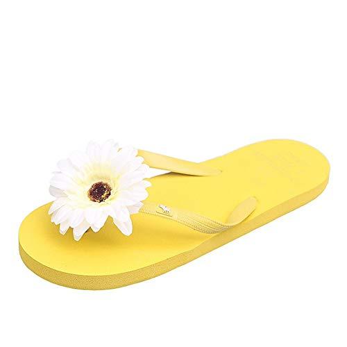 NOLOGO Nuevo Verano Flip-Flops Lleva el Rojo Flores de la Manera Sandalias y Zapatillas Playa for señoras Plana Zapatillas Fuera de la Mar Plataforma Ocasional de Moda Zapatillas Abrir-Punt