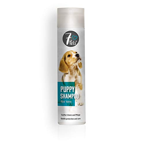SCHOPF 310068 Hundewelpen Shampoo sanfte Pflege mit Aloe Vera, 250 ml