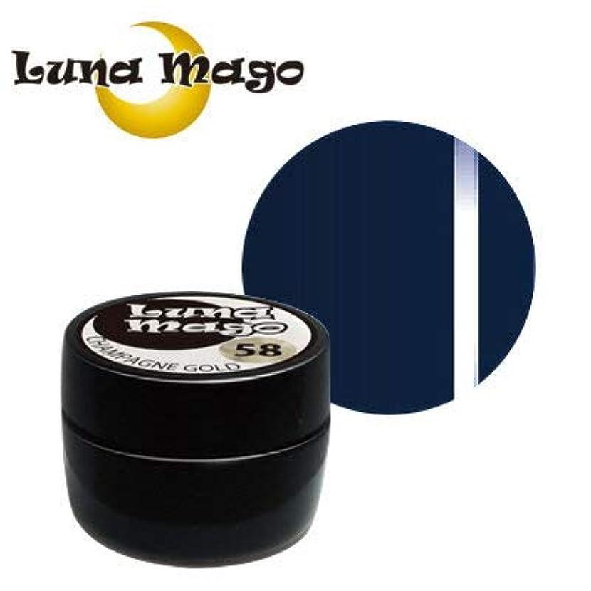 積分昇る協定Luna Mago カラージェル 5g 049 シーグリーン