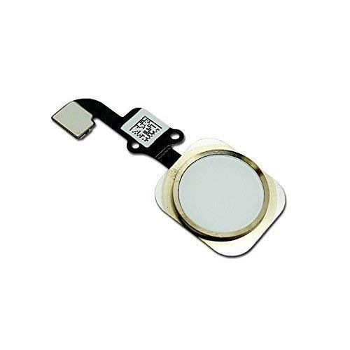 Sostituzione pulsante Home Tasto Home per iPhone 6/ 6 plus Oro con cavo Flex incluso