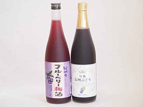 ぶどう果汁100%ジュースと果物ワイン2本セット(信州ぶどうコンコード果汁100% 岩手県産ブルーベリー梅酒) 710ml×1本 720ml×1本